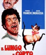 lungo_il_corto_il_gatto-small